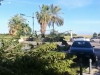 Palermo ferita dal vento, il video dal Foro Italico: ancora alberi e rami per strada