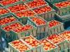 Domani al via le nuove norme Ue per i controlli sugli alimenti