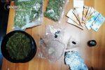 Catania, intervengono per una lite e scoprono una coltivazione di marijuana