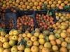 Coca Cola, sugar e plastic tax avranno impatto agrumicoltura