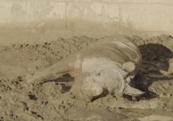 Ecco Future, la baby rinoceronte con la passione per il fango È nata a San Diego attraverso inseminazione artificiale - Ansa
