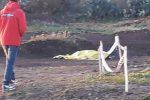 Cade mentre si allena con la moto da cross, tragico incidente a Belpasso