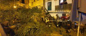 Terrore in piazza Spinuzza: il vento abbatte un albero sui tavoli di un pub