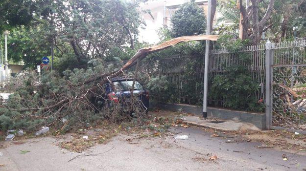 La Sicilia spazzata dal vento, si contano i danni: ad Acireale c'è un ferito