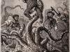 Il calamaro gigante in unillustrazione di Ventimila leghe sotto i mari (fonte: Alphonse de Neuville)