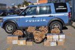 Viagrande, botti illegali sequestrati per la festa del patrono: una denuncia