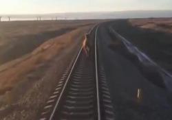 Ecco cosa si è trovato sui binari questo treno passeggeri in Russia Il convoglio è arrivato alla stazione successiva con 44 minuti di ritardo - CorriereTV