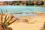 Siracusa, pesci morti nella acque della Pillirina: controlli di Arpa e Asp