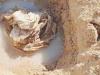 Il sacco di iuta trovato a San Leone: serviva a fronteggiare l'erosione
