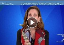 Coronavirus, l'appello di Ilaria Capua: «Le aziende si organizzino col telelavoro quando arriverà in Italia» La virologa ospite di Myrta Merlino a L'aria che tira: «Questa infezione arriverà in Italia, farà il giro del mondo, combinerà dei guai nei Paesi più poveri e quindi organizziamoci» - C...