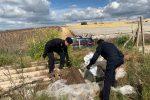 Mazzarrone, trovati in campagna 200 chili di cavi elettrici rubati a Caltagirone
