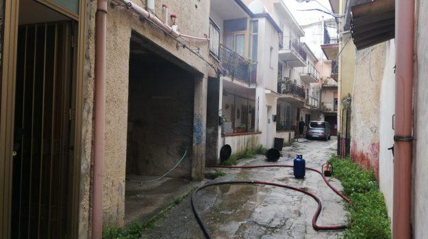 incendi, Monreale, pioppo, Palermo, Cronaca