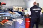 """Catania, sequestrato miele """"sospetto"""" e conservato in fusti esposti al sole"""