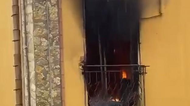 incendi, Roccamena, Palermo, Cronaca