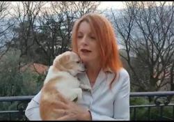 Coronavirus, Leidaa al fianco di chi non può gestire i propri cani  Il video-appello del presidente Michela Vittoria Brambilla: «Ci sono tante famiglie in difficoltà e persone ricoverate che non riescono ad occuparsi dei loro piccoli amici. Noi siamo a disposizione con i nostri volontari»  - Corrier...