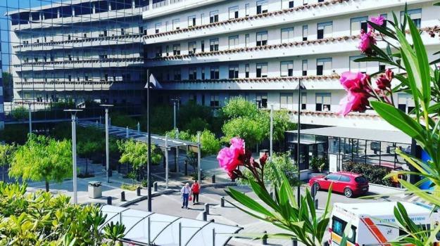 avvelenamento, cefalù, Palermo, Cronaca