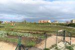 Oasi Don Bosco a Ispica, ortaggi e verdura gratis