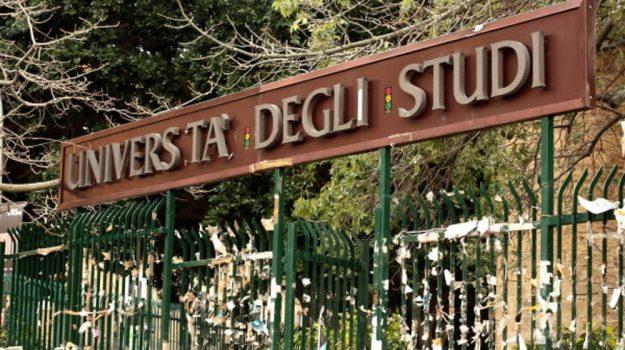 università, Sicilia, Politica