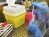 Uno studio sulla genetica del Coronavirus condotto dall'università di Palermo