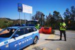 Caltanissetta, sorpreso a trasportare un pony in auto: multato 30enne