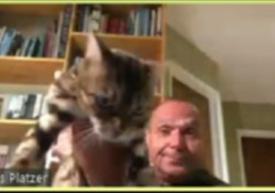 La gaffe in videoconferenza del politico Usa: lancia il gatto in diretta su Zoom, costretto a dimettersi Chris Platzer stava parlando con i colleghi in una videochat quando ha preso il felino e lo ha tirato fuori dall'inquadratura di fronte allo sgomento dei colleghi - Corriere Tv