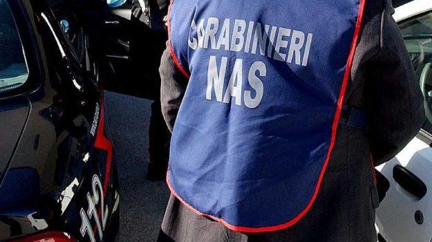abusivismo, anziani, Catania, Cronaca