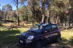 Valguarnera, vandali al palazzo Pennisi: indagini in corso