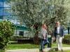 Olio: nuovo piano sostenibilità per 100 anni Monini