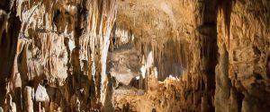 Siracusa, scoperto un nuovo insetto nella Grotta Monello