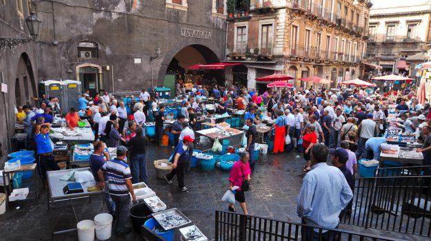 pesce, Catania, Cronaca