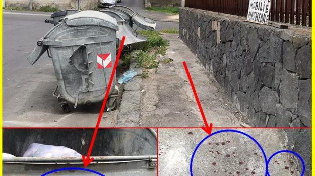 aggressione, Catania, Cronaca