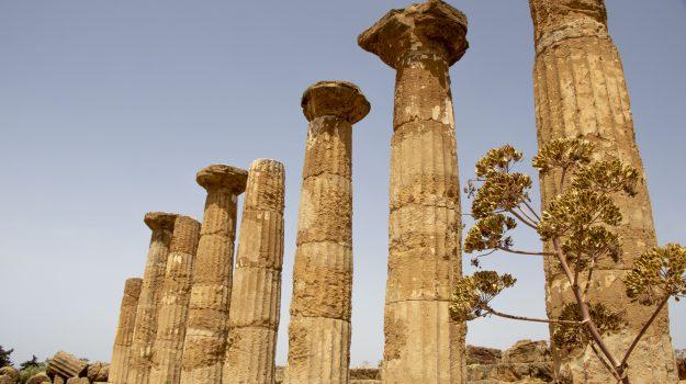 Da sabato in Sicilia riaprono musei e Parchi archeologici, ingresso gratuito per una settimana