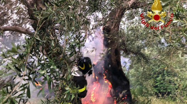 incendi, Messina, Ragusa, Cronaca
