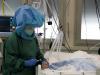 Coronavirus, il Covid arretra ancora: nuovi casi al minimo da febbraio
