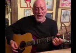 David Gilmour suona in quarantena: show in famiglia del chitarrista dei Pink Floyd con un pulcino in testa La performance in casa - Agenzia Vista/Alexander Jakhnagiev