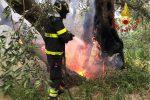 Incendi nel Ragusano, a fuoco magazzino di prodotti agricoli