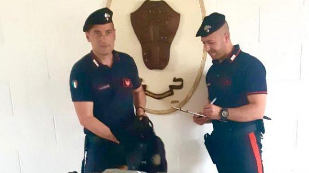 Palermo, nascondeva in casa 2 chili di marijuana: la droga avrebbe fruttato 10 mila euro