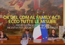 Congedi parentali, incentivi per il lavoro femminile e infanzia: tutte le misure del Family Act Via libera del consiglio dei Ministri - Ansa