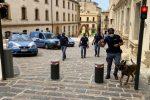 Da Agrigento a Caltanissetta con la droga nello zaino: fermata appena scesa dal pullman