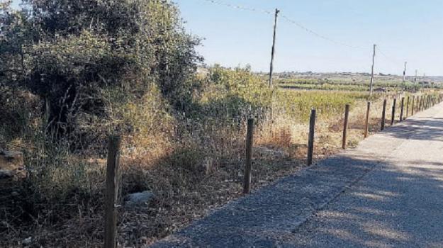 menfi, Agrigento, Cronaca