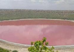 Un lago in India ha cambiato colore diventando improvvisamente rosa Il Lago del cratere Lonar, creato dall'impatto di un meteorite, stupisce gli scienziati - Dalla Rete