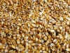 Al via aiuti per 20 mln alle filiere di mais, legumi e soia