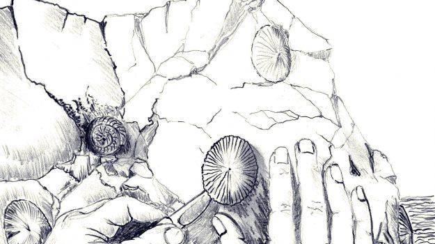 libri, Arturo Caravello, Sicilia, Cultura