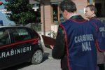 Controlli igienico-sanitari, chiuso un ristorante a Portopalo di Capo Passero