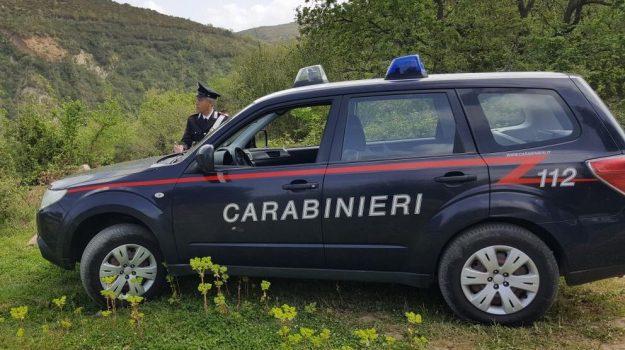 omicidio, suicidio, Agostino Alfieri, Messina, Cronaca