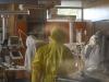Coronavirus, cresce il numero di nuovi casi ma deceduti in calo