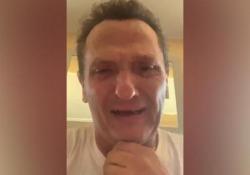 Enzo Salvi in lacrime per il pappagallo preso a sassate: «Violenza inaudita e gratuita» Lo sfogo su Facebook - Ansa