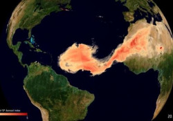 Godzilla, la gigantesca nube di sabbia dal Sahara al Sudamerica: il viaggio visto dal satellite La nuvola è la più grande degli ultimi 20 anni - Corriere Tv