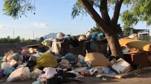 rifiuti, vandalismo, Palermo, Cronaca