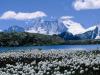 Reputazione turistica, il Trentino Alto Adige resta in vetta